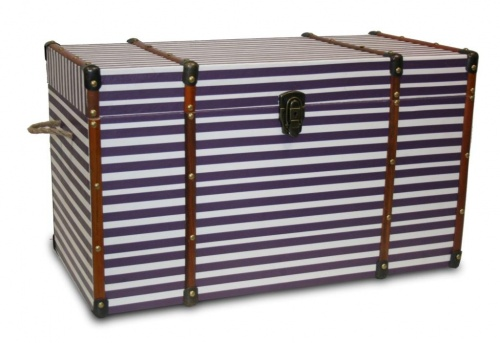 Marine striped trunk