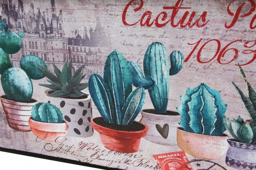 Cactus party cofre