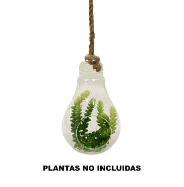 Hanging glass and rope hanging drop planter
