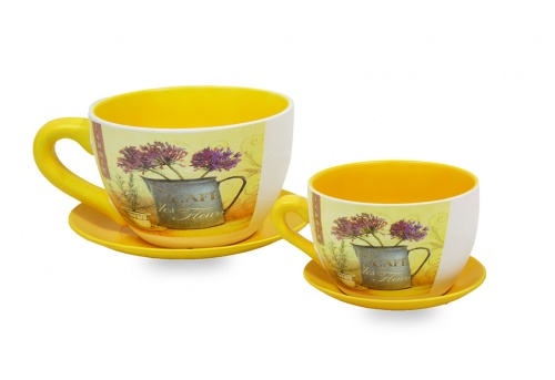 Taza macetero cafe jardin set/2